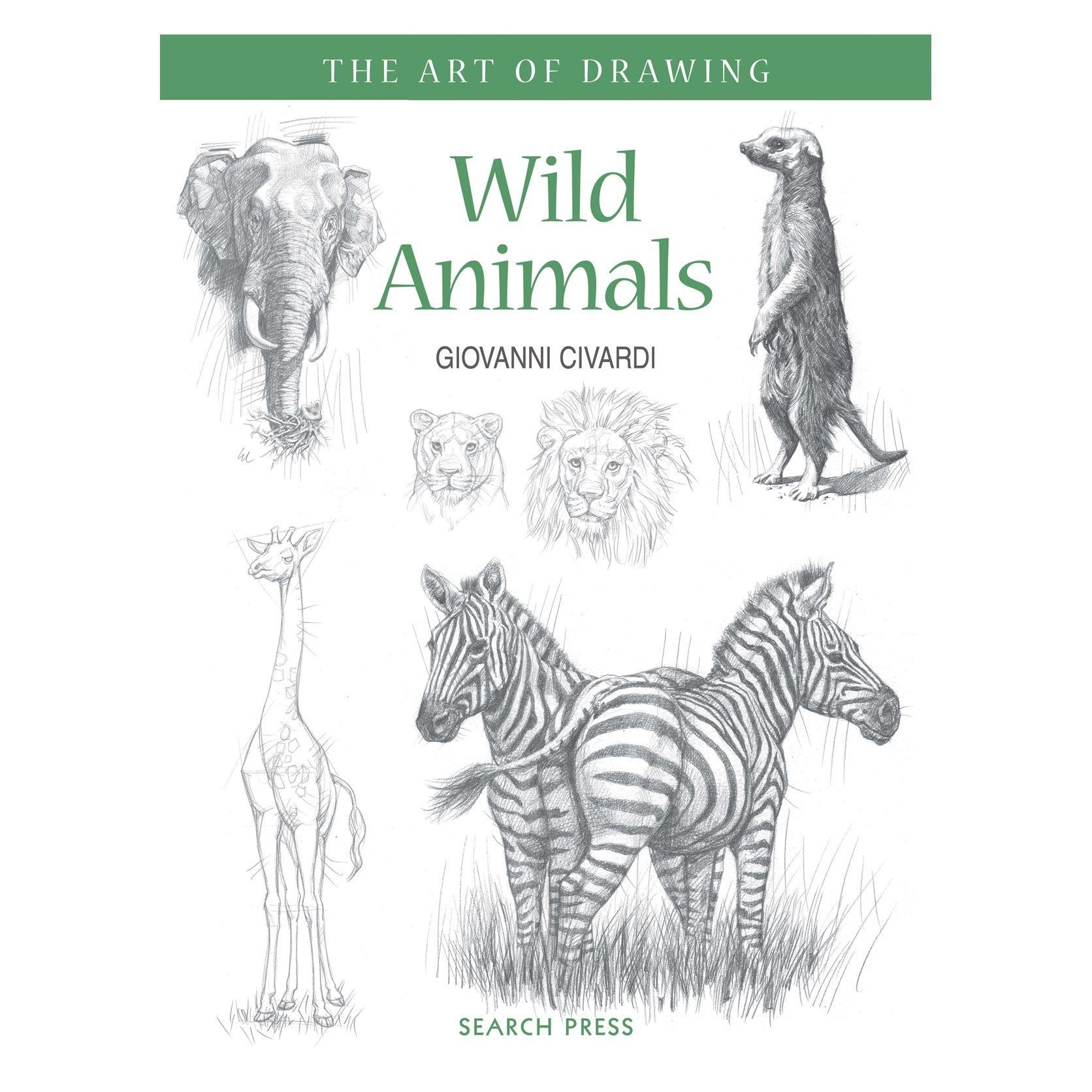 beginners guide to drawing wild animals