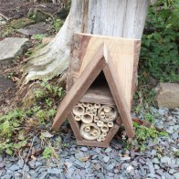 Bug Hotel insect house