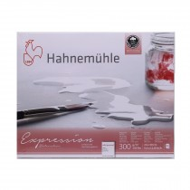 Hahnemuhle Expressions 24x30cm watercolour 300gsm Cold pressed