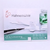 Hahnemuhle Harmony 9 x 12 watercolour 300gsm Hot Pressed