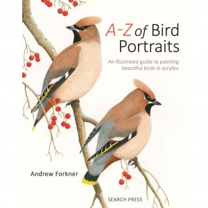 learn how to paint birds painting birds search press andrew forkner