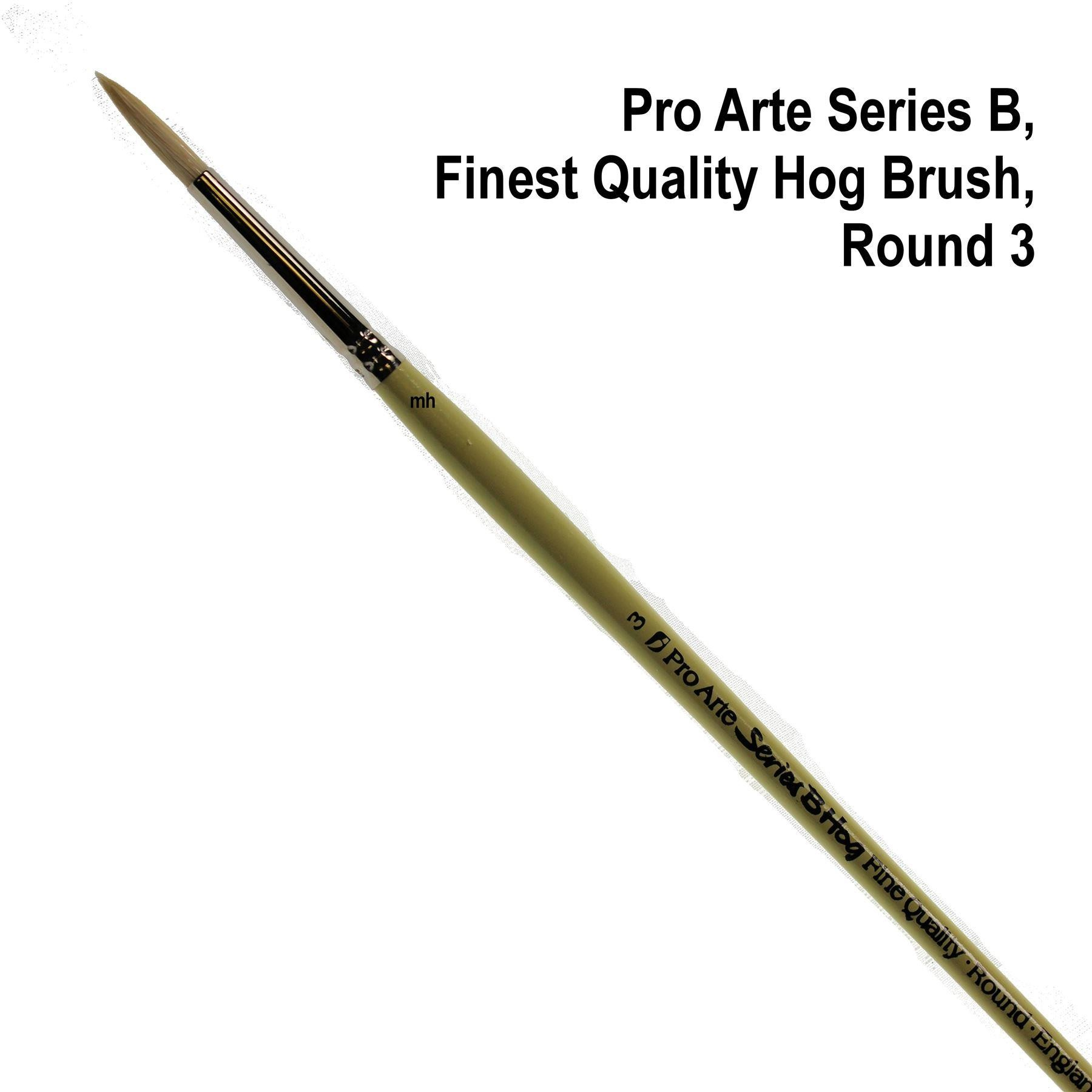 Pro Arte Series B round quality hogs hair