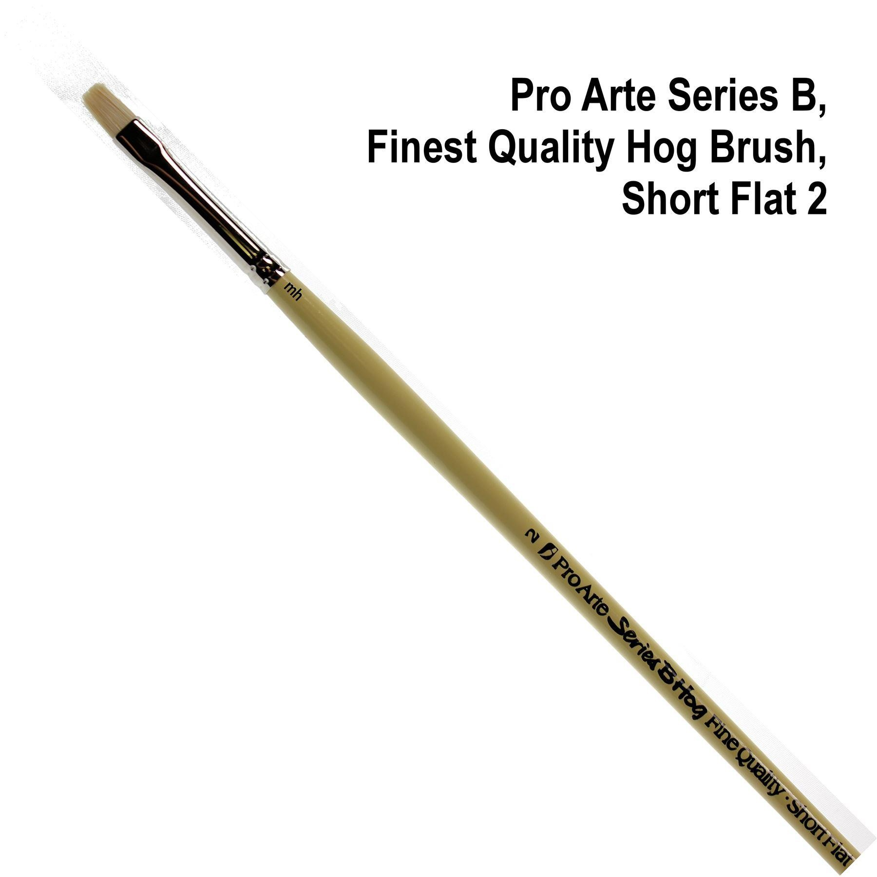 Pro Arte Series B fine quality hogs hair short flat brush