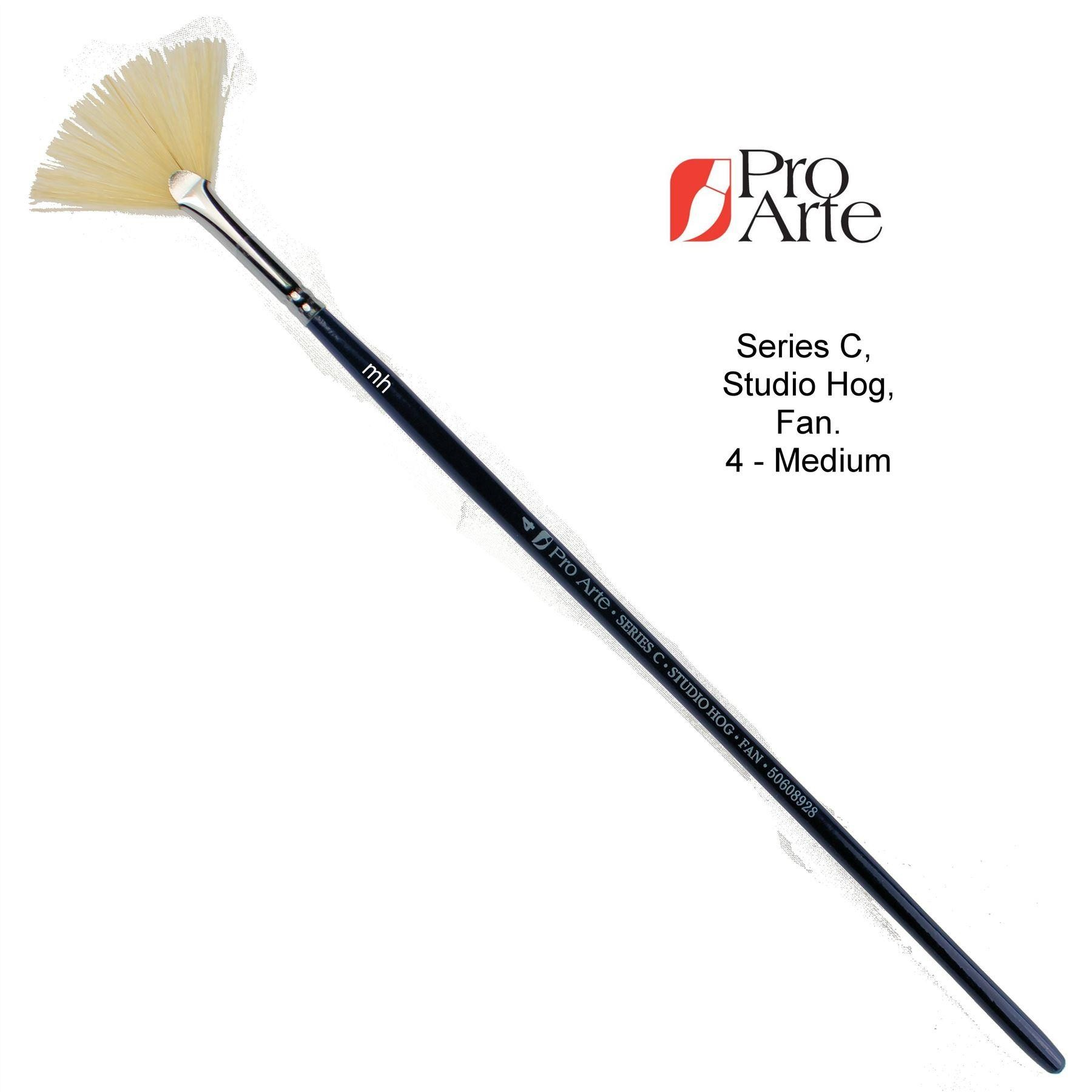 Pro Arte Series C Hog Hairs Fan Brush